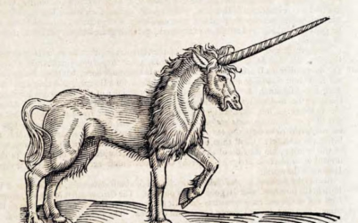 "The ""essence of dragons blood, unicorns horn and the oil of mans skull"" – Tales from a 17th century apothecary physician"
